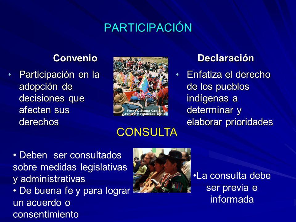 La consulta debe ser previa e informada