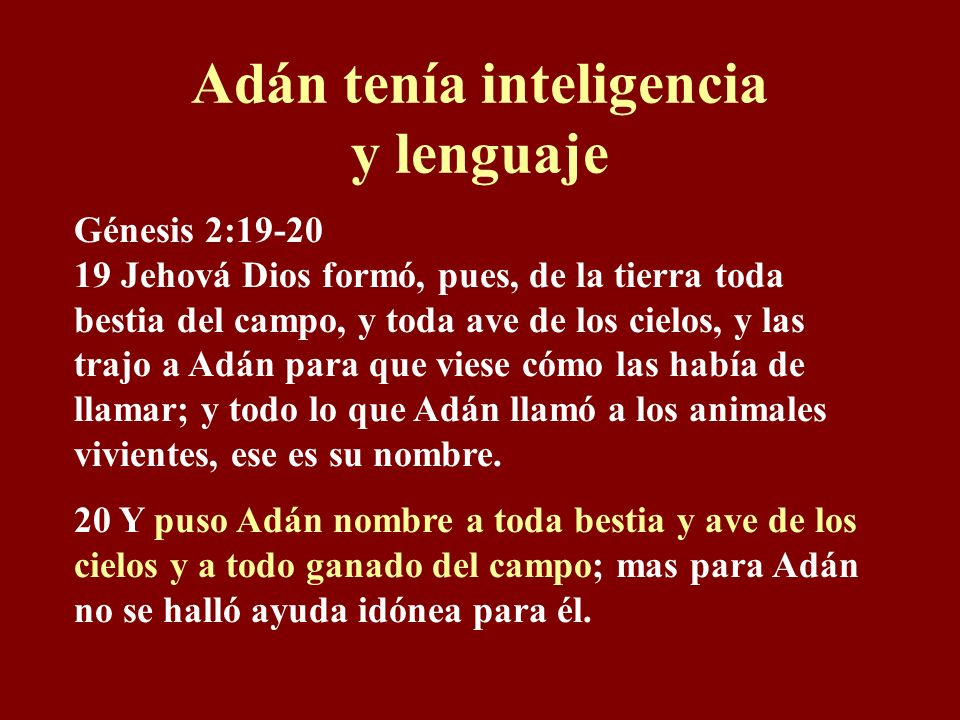 Adán tenía inteligencia y lenguaje