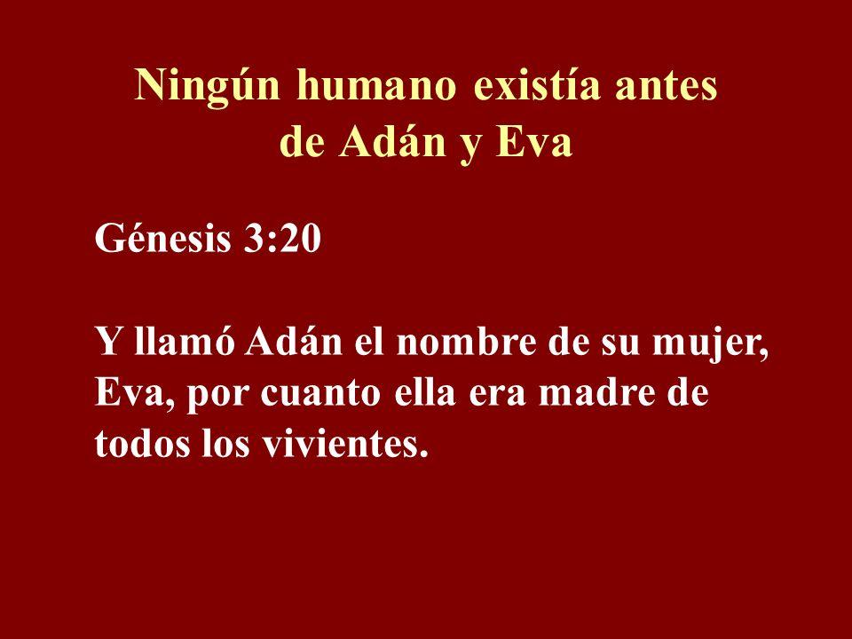 Ningún humano existía antes de Adán y Eva