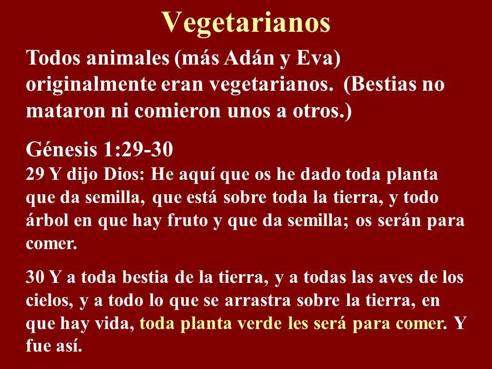 Vegetarianos Todos animales (más Adán y Eva) originalmente eran vegetarianos. (Bestias no mataron ni comieron unos a otros.)