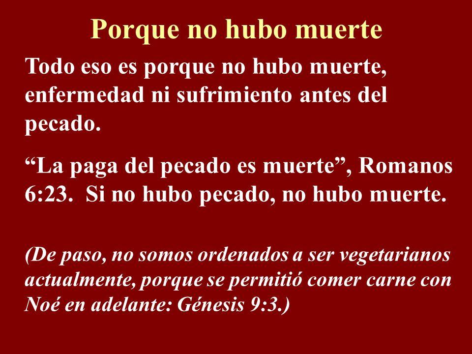 Porque no hubo muerte Todo eso es porque no hubo muerte, enfermedad ni sufrimiento antes del pecado.