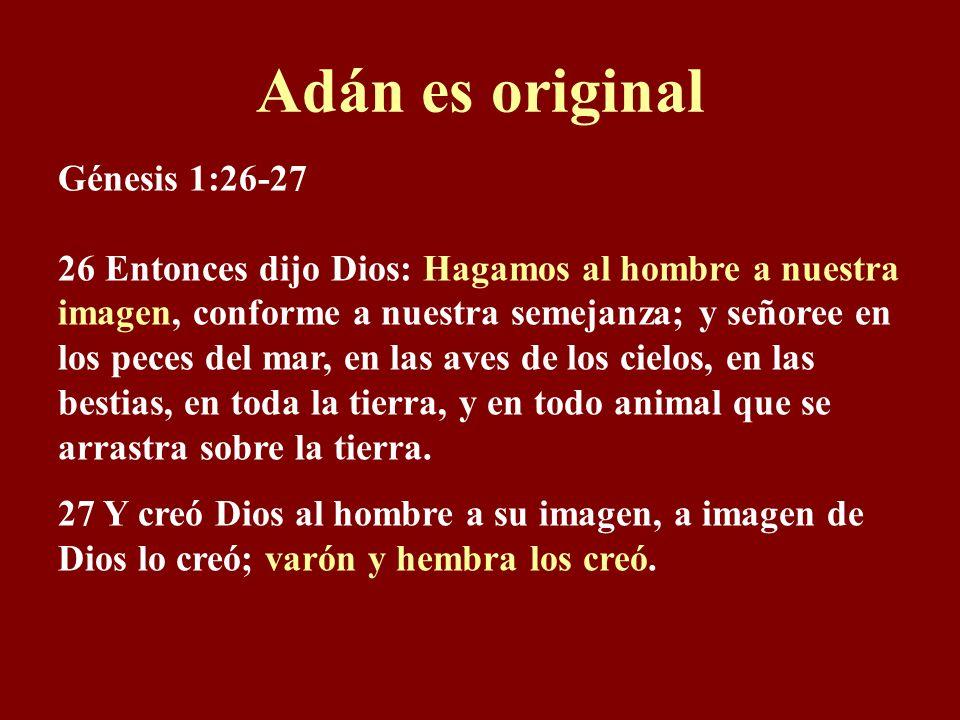 Adán es original Génesis 1:26-27