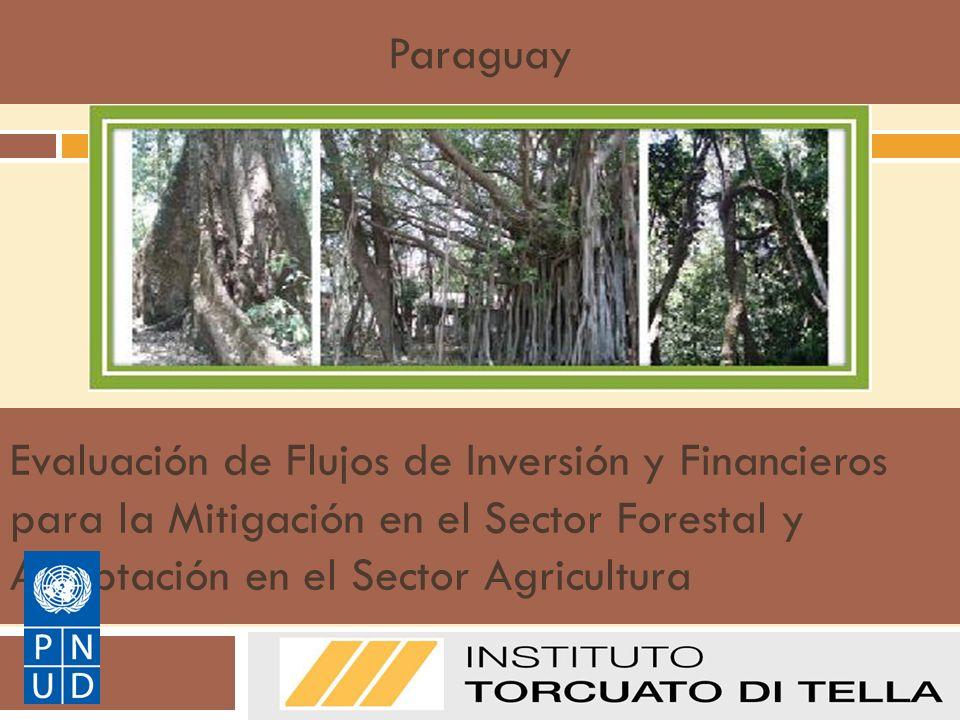 Paraguay Evaluación de Flujos de Inversión y Financieros para la Mitigación en el Sector Forestal y Adaptación en el Sector Agricultura.