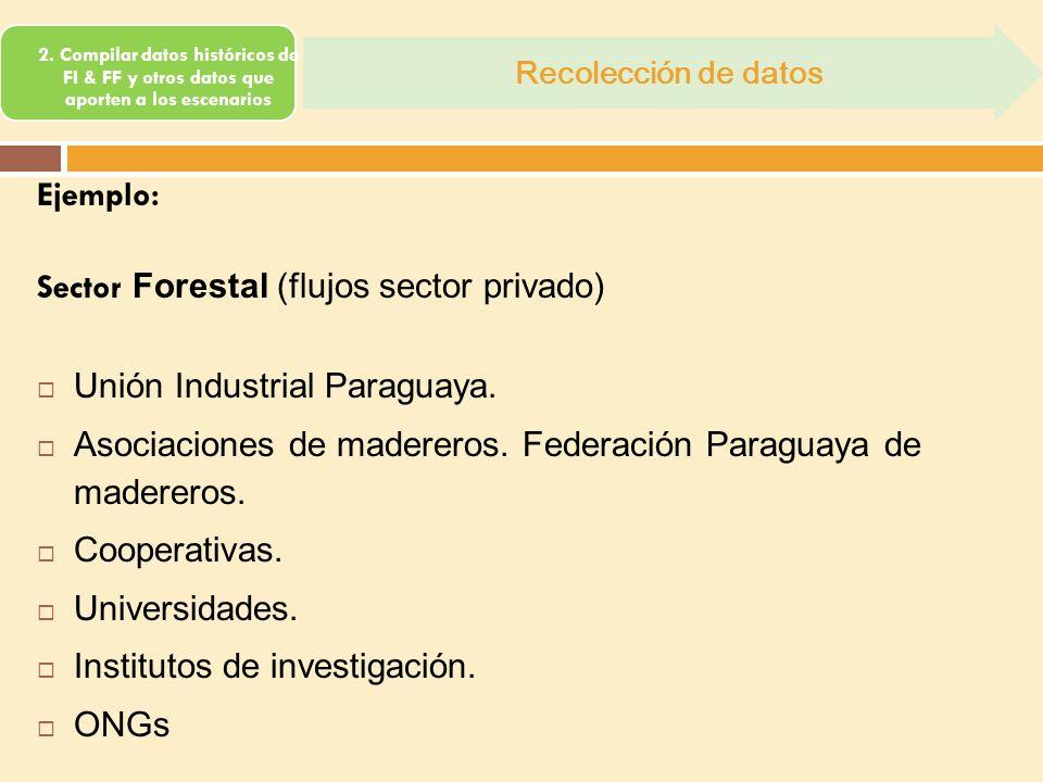 Sector Forestal (flujos sector privado) Unión Industrial Paraguaya.