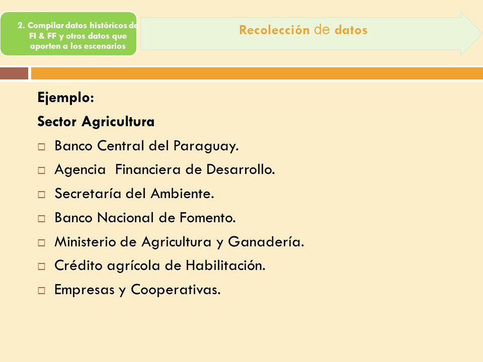 Banco Central del Paraguay. Agencia Financiera de Desarrollo.