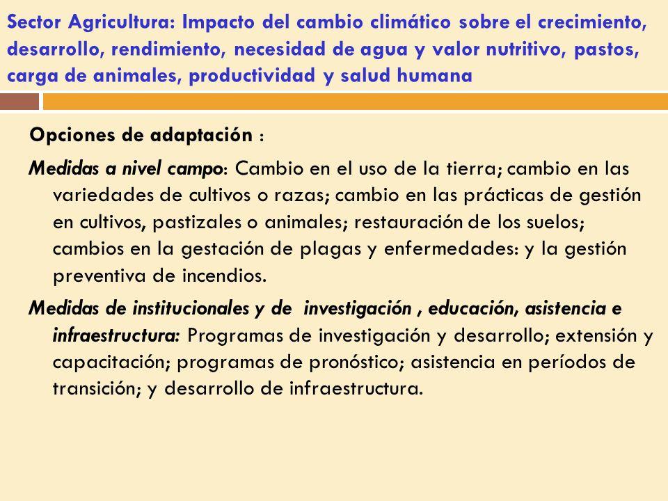 Sector Agricultura: Impacto del cambio climático sobre el crecimiento, desarrollo, rendimiento, necesidad de agua y valor nutritivo, pastos, carga de animales, productividad y salud humana