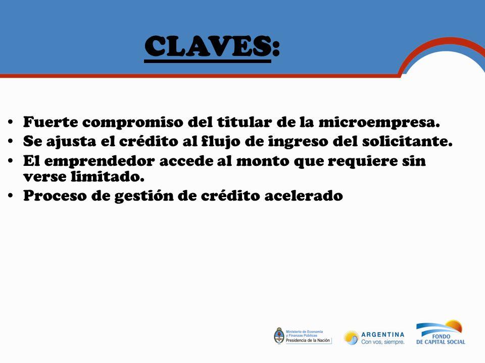 CLAVES: Fuerte compromiso del titular de la microempresa.