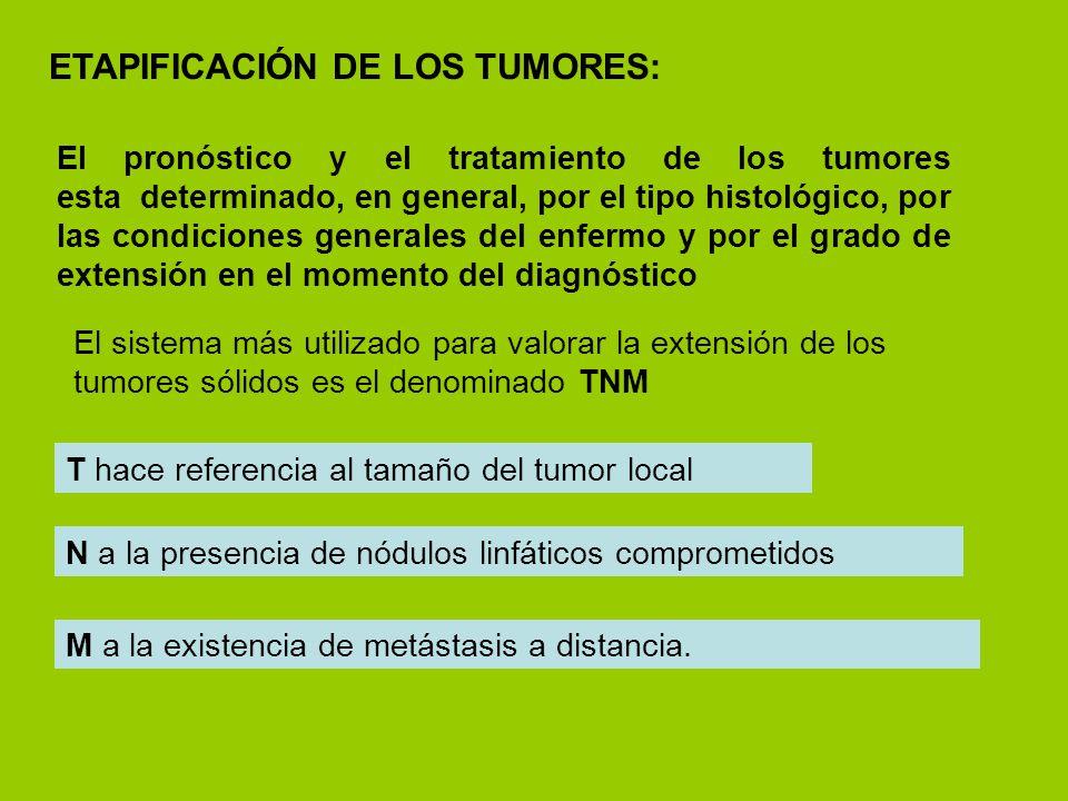 ETAPIFICACIÓN DE LOS TUMORES: