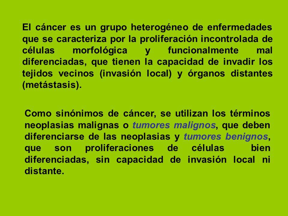 El cáncer es un grupo heterogéneo de enfermedades que se caracteriza por la proliferación incontrolada de células morfológica y funcionalmente mal diferenciadas, que tienen la capacidad de invadir los tejidos vecinos (invasión local) y órganos distantes (metástasis).