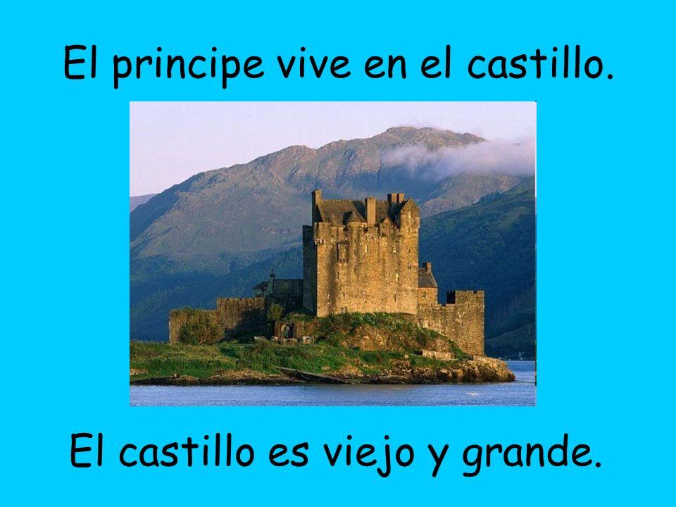 El principe vive en el castillo.