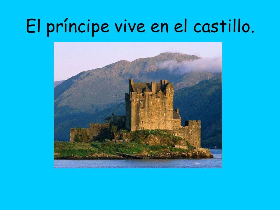 El príncipe vive en el castillo.