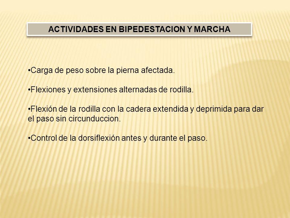 ACTIVIDADES EN BIPEDESTACION Y MARCHA