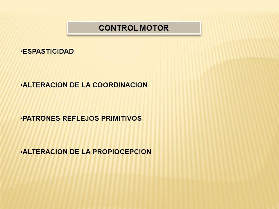 CONTROL MOTOR ESPASTICIDAD ALTERACION DE LA COORDINACION