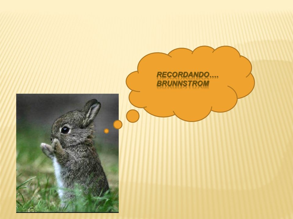 RECORDANDO….BRUNNSTROM
