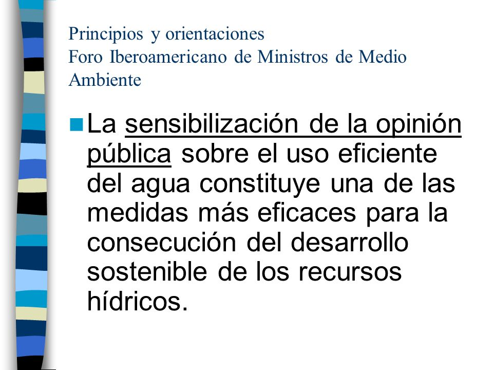 Principios y orientaciones Foro Iberoamericano de Ministros de Medio Ambiente