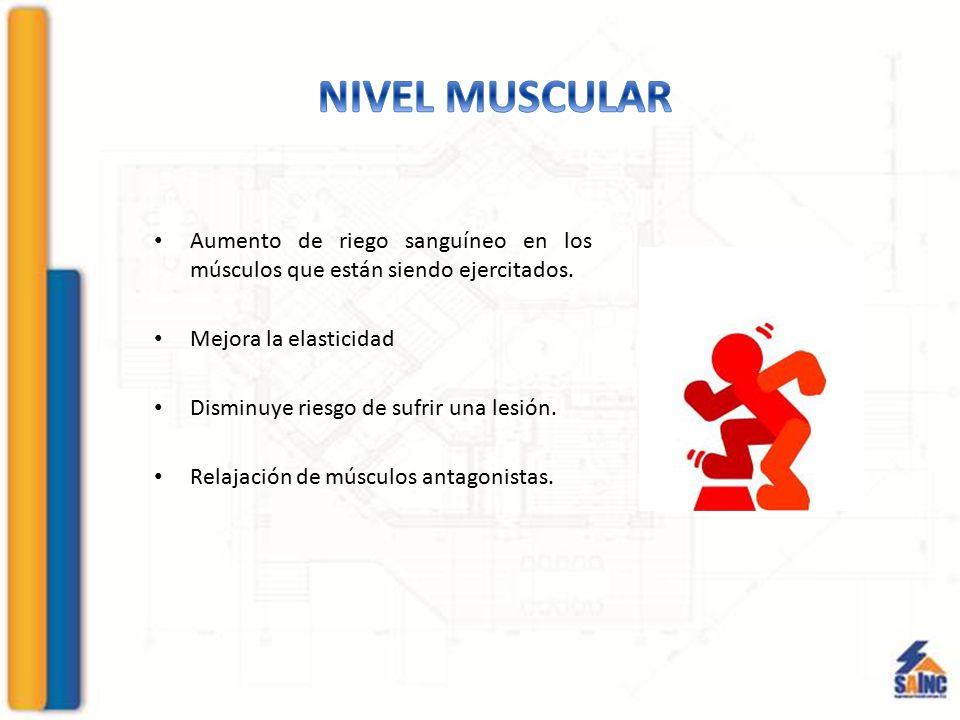 NIVEL MUSCULAR Aumento de riego sanguíneo en los músculos que están siendo ejercitados. Mejora la elasticidad.