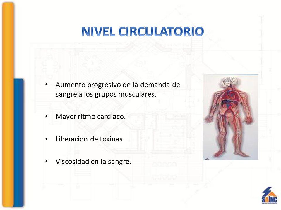 NIVEL CIRCULATORIO Aumento progresivo de la demanda de sangre a los grupos musculares. Mayor ritmo cardiaco.