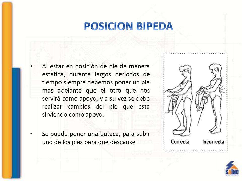 POSICION BIPEDA