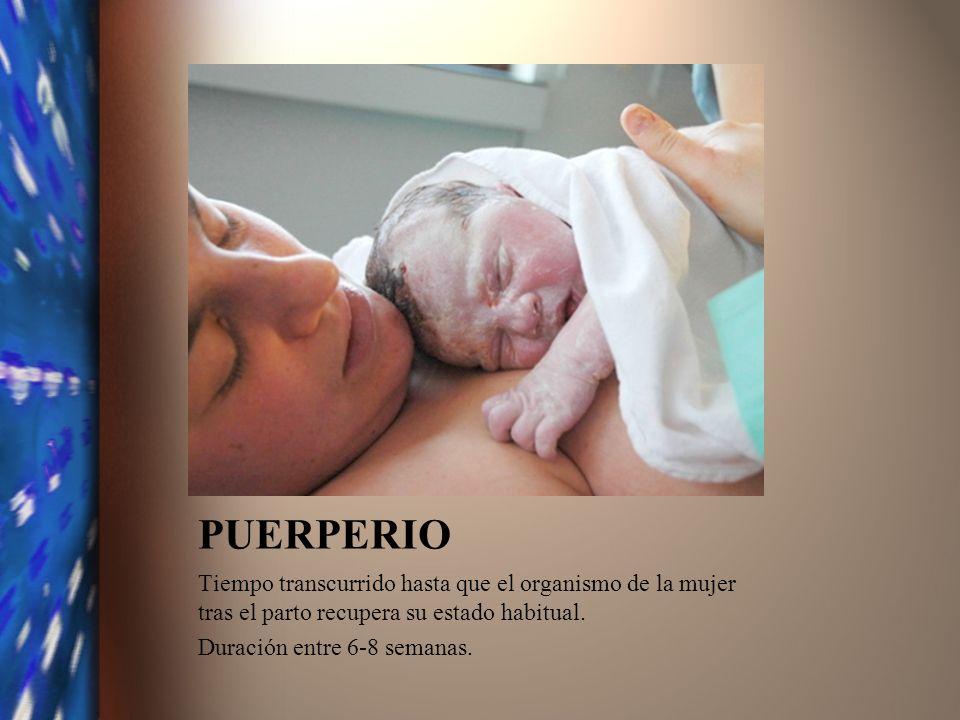PUERPERIO Tiempo transcurrido hasta que el organismo de la mujer tras el parto recupera su estado habitual.
