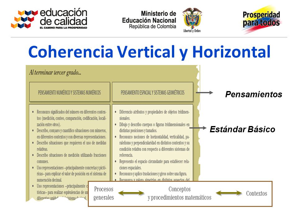Coherencia Vertical y Horizontal