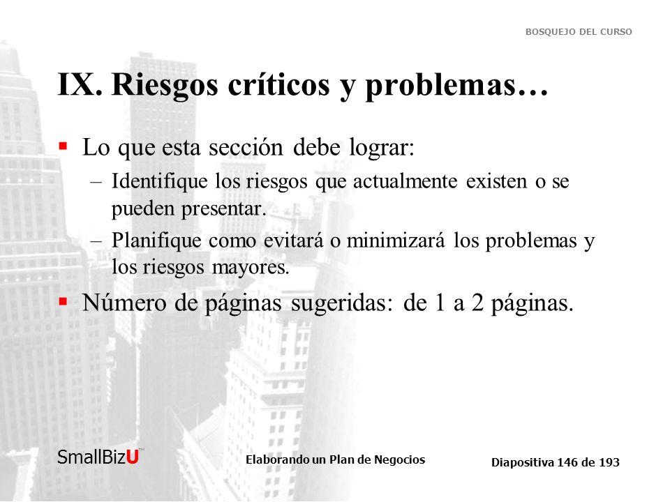 IX. Riesgos críticos y problemas…