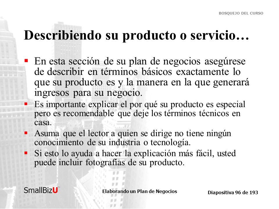Describiendo su producto o servicio…