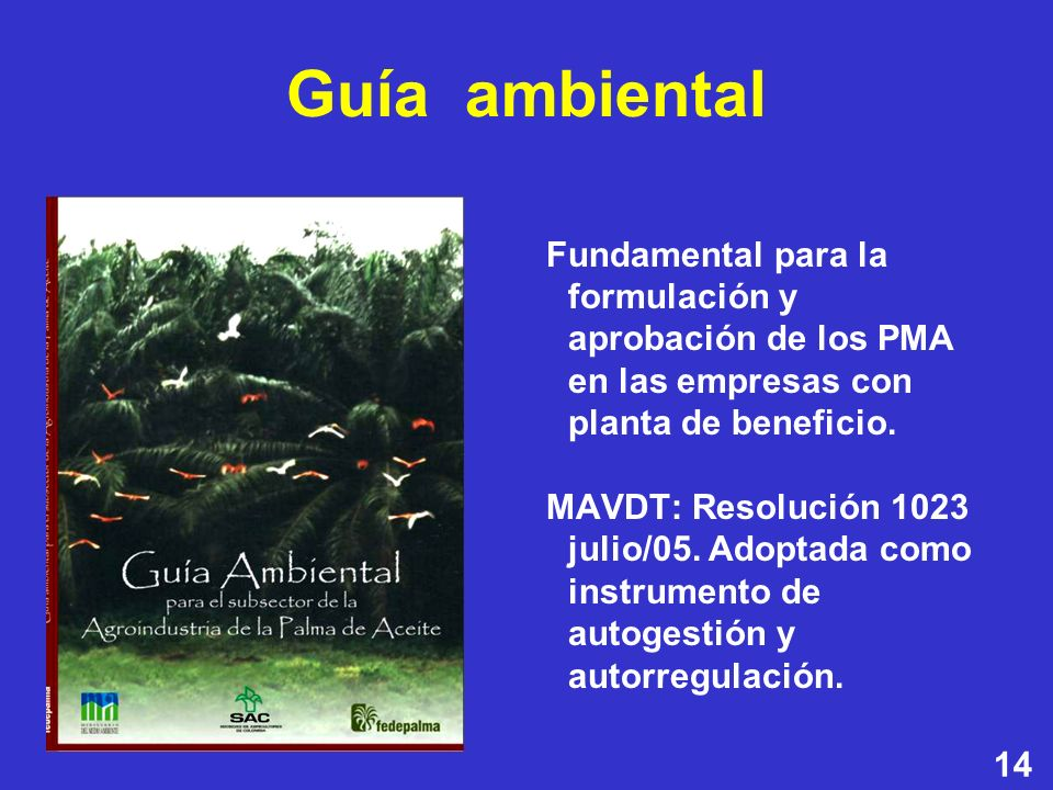 Guía ambiental Fundamental para la formulación y aprobación de los PMA en las empresas con planta de beneficio.