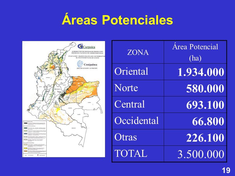 Áreas Potenciales ZONA. Área Potencial. (ha) Oriental. 1.934.000. Norte. 580.000. Central. 693.100.