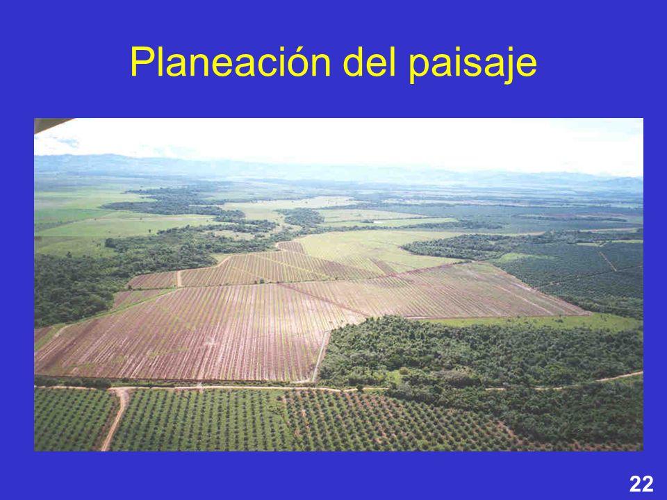 Planeación del paisaje