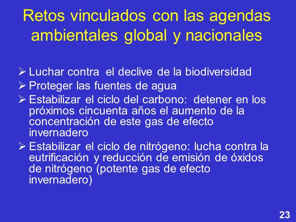 Retos vinculados con las agendas ambientales global y nacionales