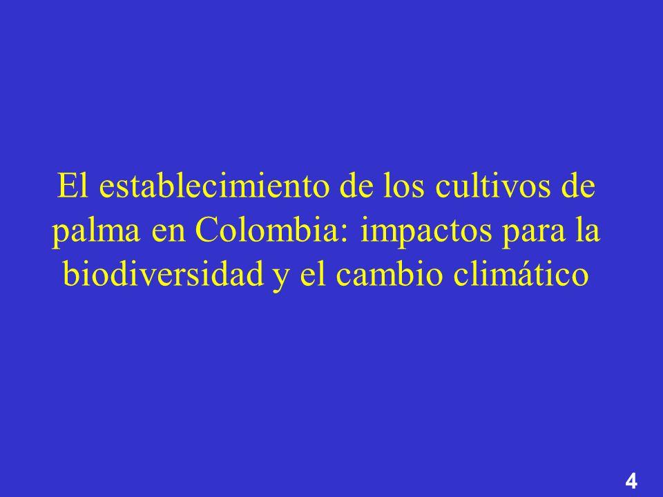 El establecimiento de los cultivos de palma en Colombia: impactos para la biodiversidad y el cambio climático