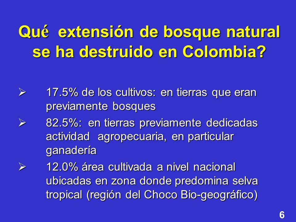 Qué extensión de bosque natural se ha destruido en Colombia