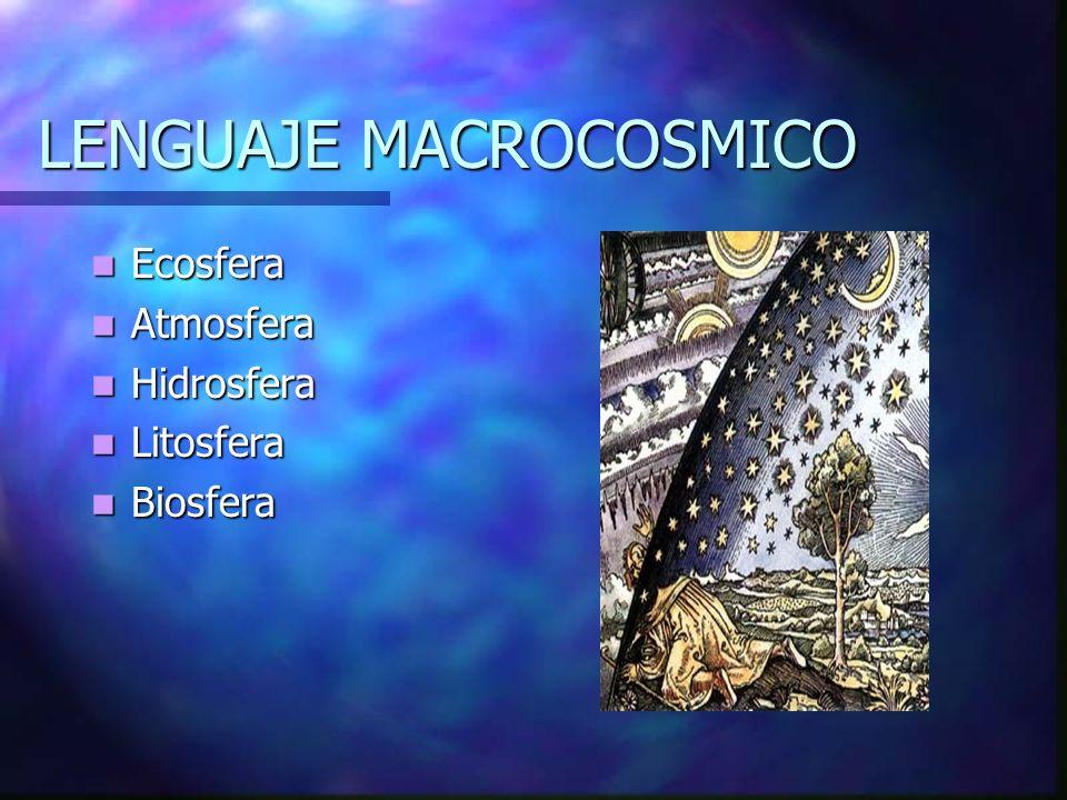 LENGUAJE MACROCOSMICO