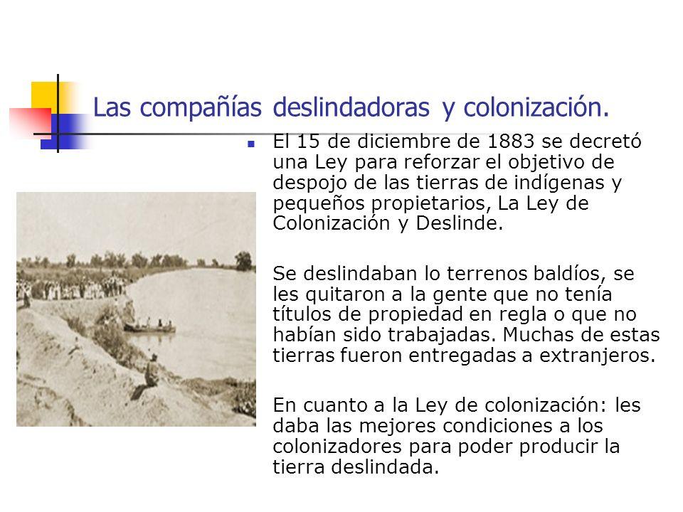 Las compañías deslindadoras y colonización.