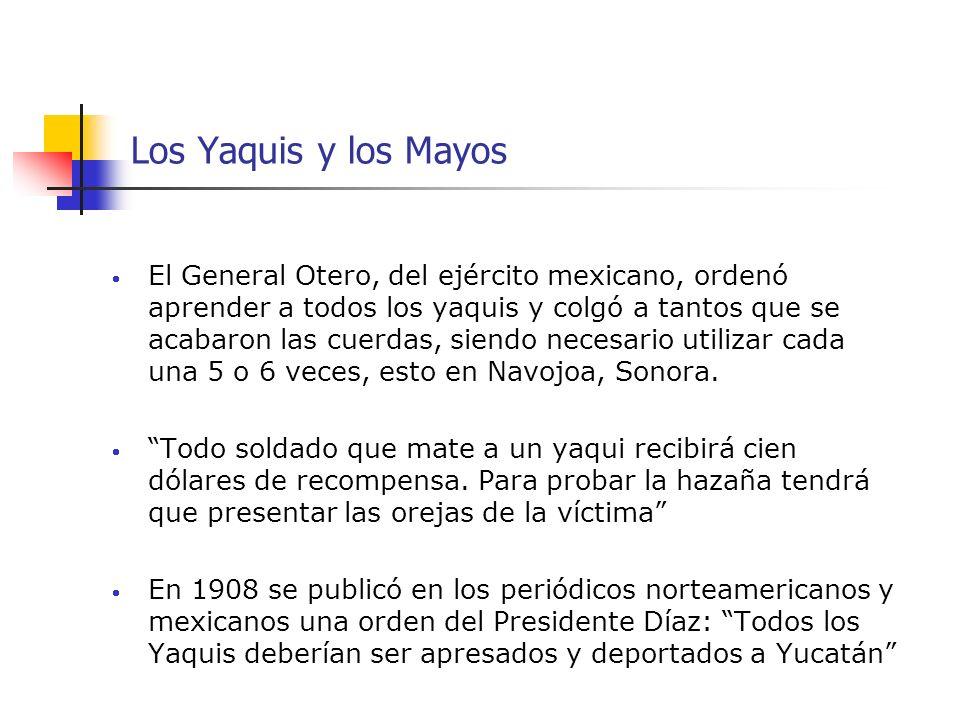 Los Yaquis y los Mayos