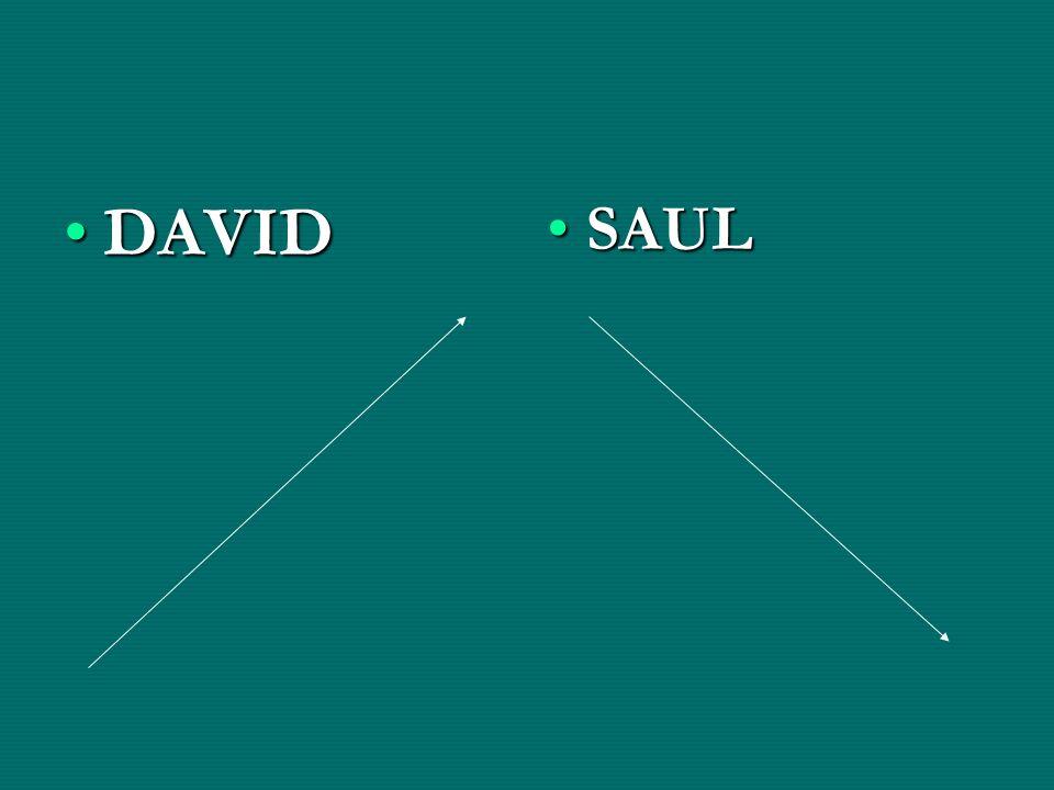 DAVID SAUL