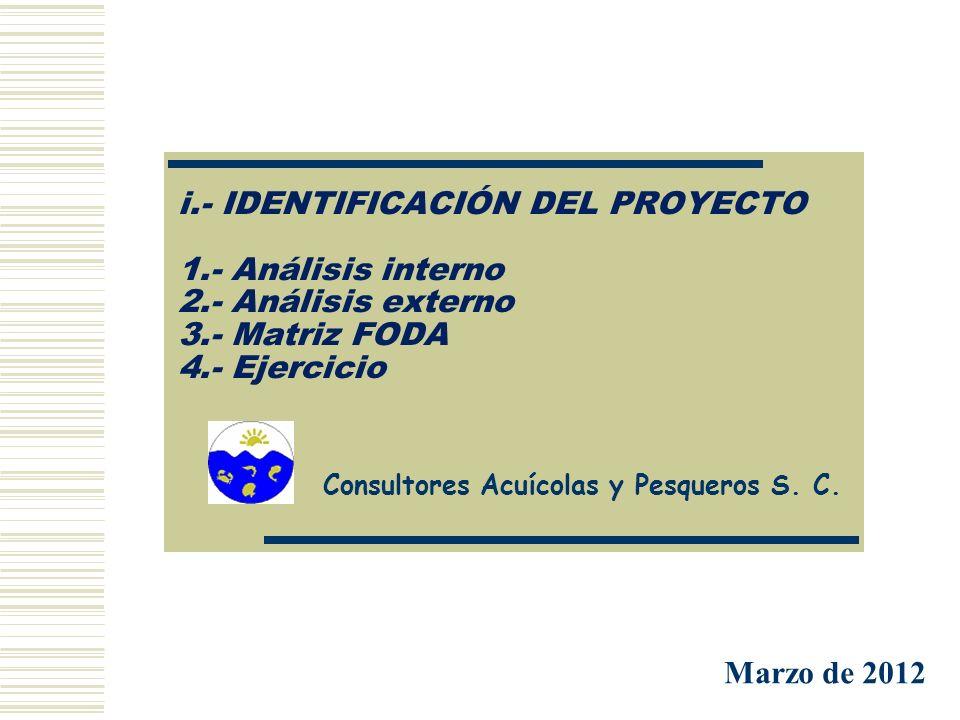 i. - IDENTIFICACIÓN DEL PROYECTO 1. - Análisis interno 2