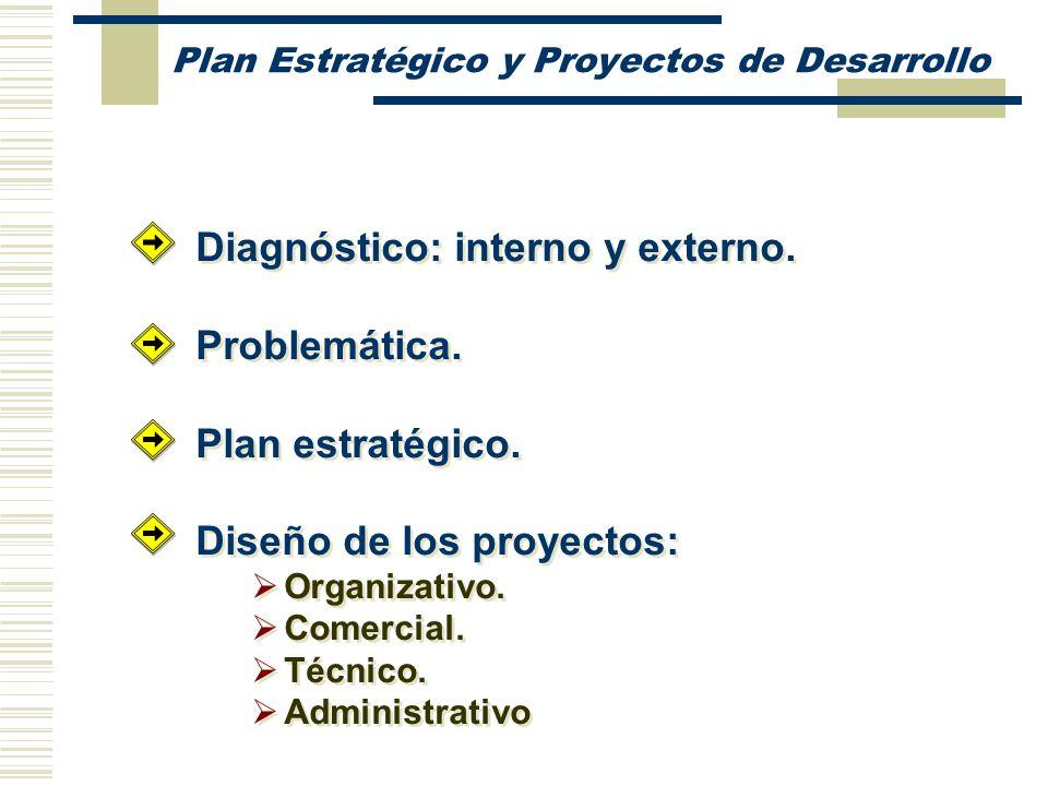 Plan Estratégico y Proyectos de Desarrollo