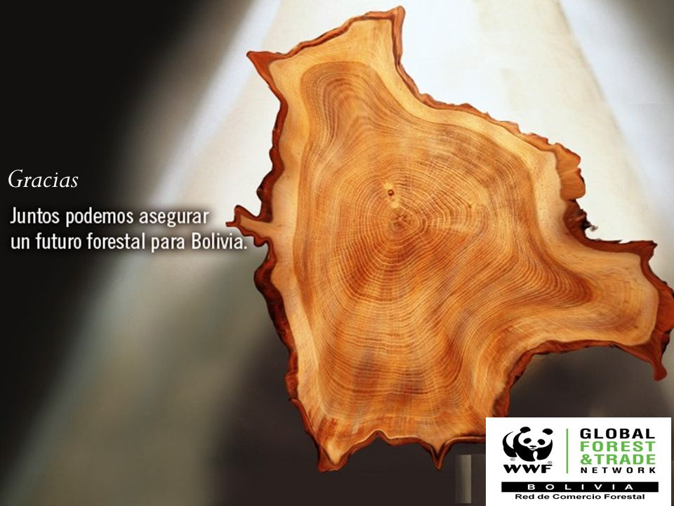 © WWF / Gustavo YBARRATHANK YOU. Gracias. In English we can say thank you together we can assure a forest future for Bolivia.