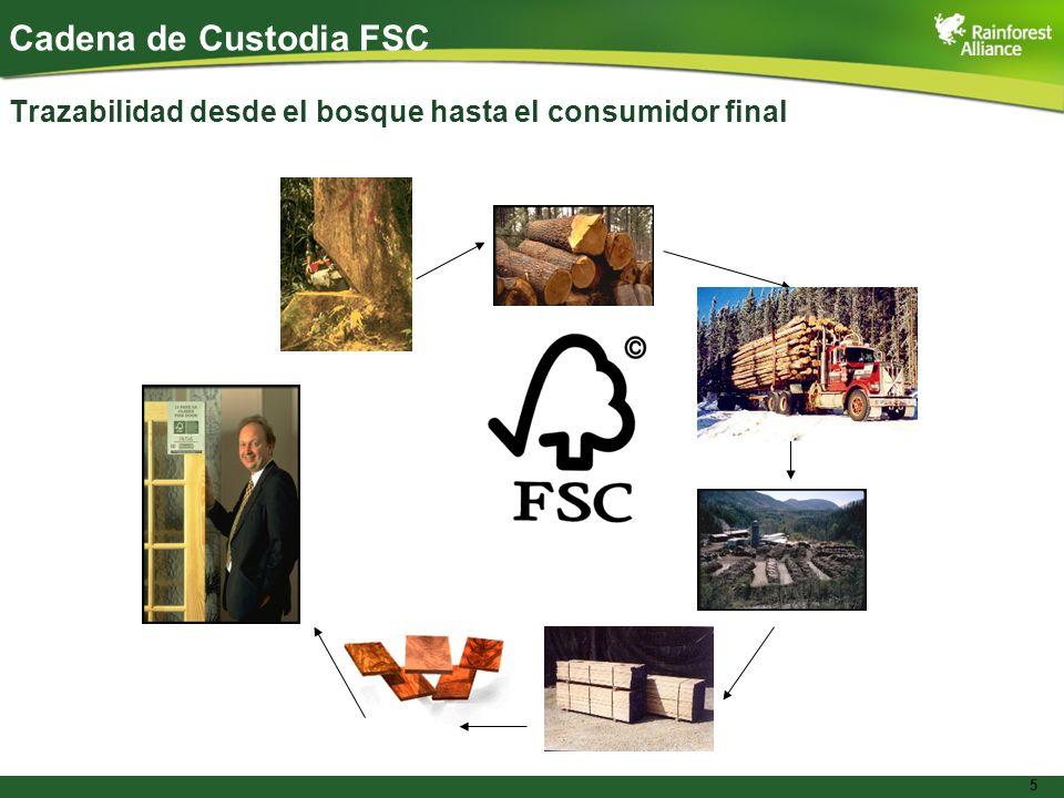 Cadena de Custodia FSC Trazabilidad desde el bosque hasta el consumidor final