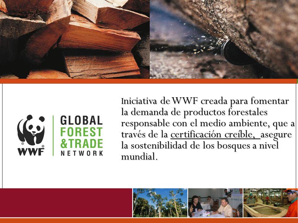 Iniciativa de WWF creada para fomentar la demanda de productos forestales responsable con el medio ambiente, que a través de la certificación creíble, asegure la sostenibilidad de los bosques a nivel mundial.