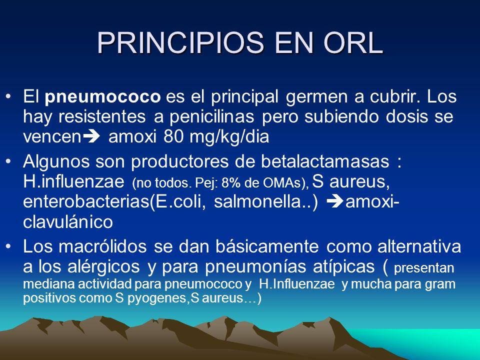 PRINCIPIOS EN ORL El pneumococo es el principal germen a cubrir. Los hay resistentes a penicilinas pero subiendo dosis se vencen amoxi 80 mg/kg/dia.