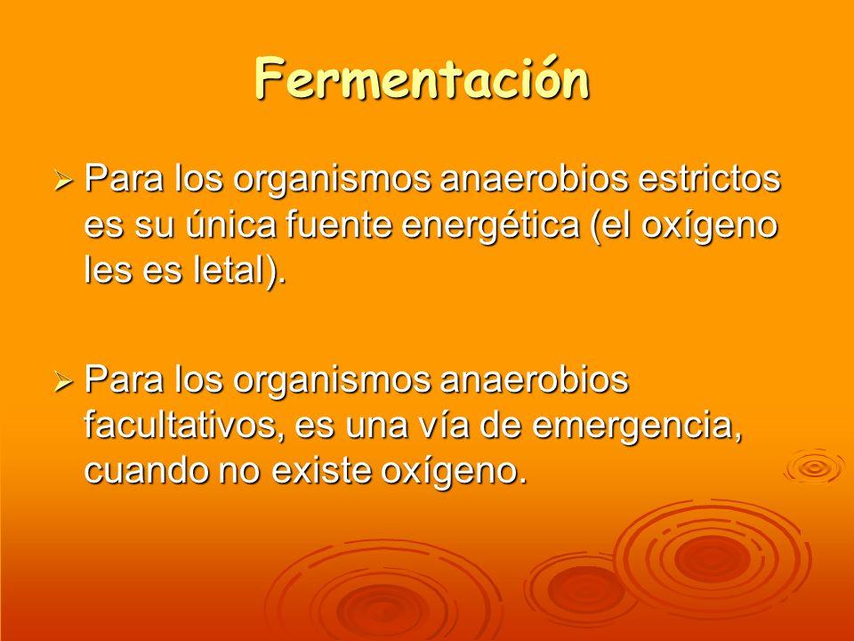 Fermentación Para los organismos anaerobios estrictos es su única fuente energética (el oxígeno les es letal).