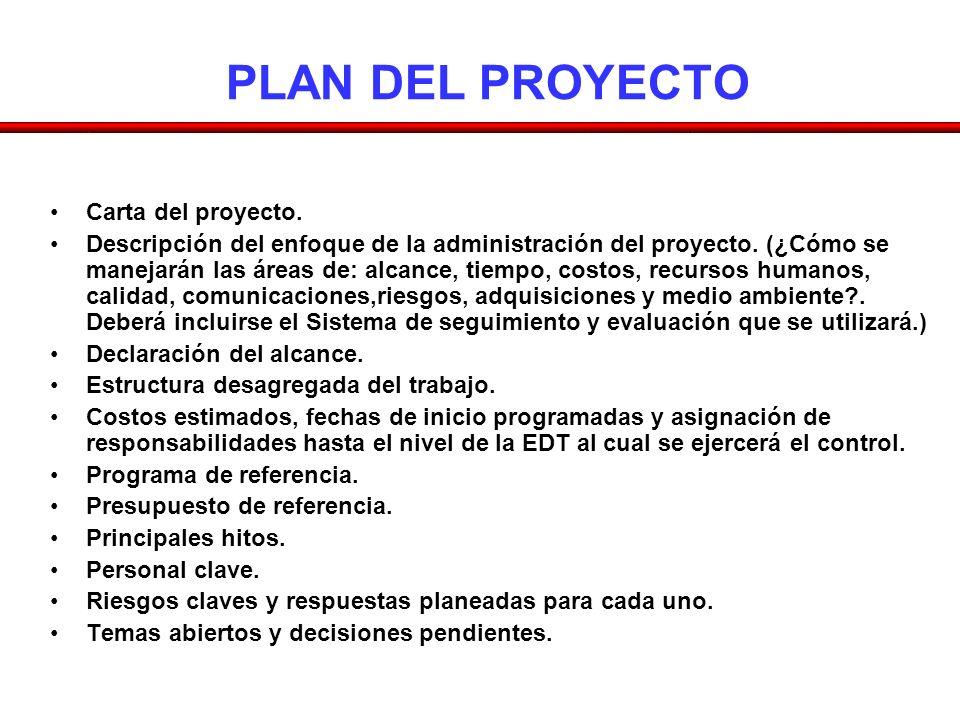 PLAN DEL PROYECTO Carta del proyecto.