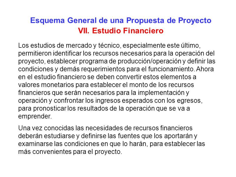 Esquema General de una Propuesta de Proyecto VII. Estudio Financiero