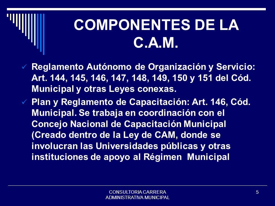 CONSULTORIA CARRERA ADMINISTRATIVA MUNICIPAL