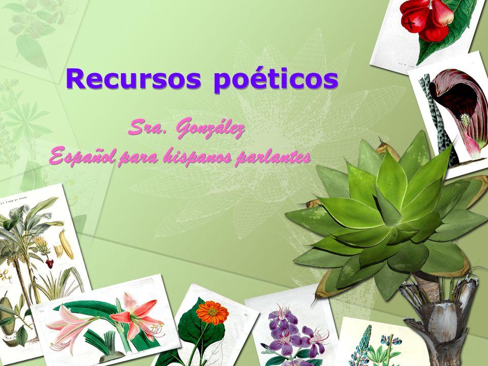 Sra. González Español para hispanos parlantes