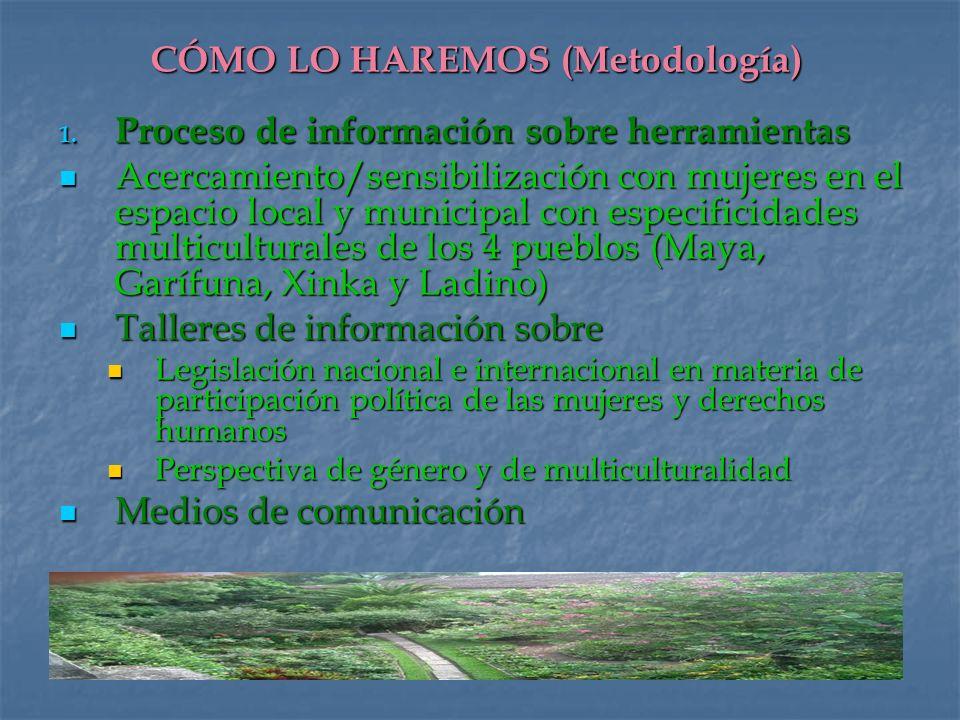 CÓMO LO HAREMOS (Metodología)