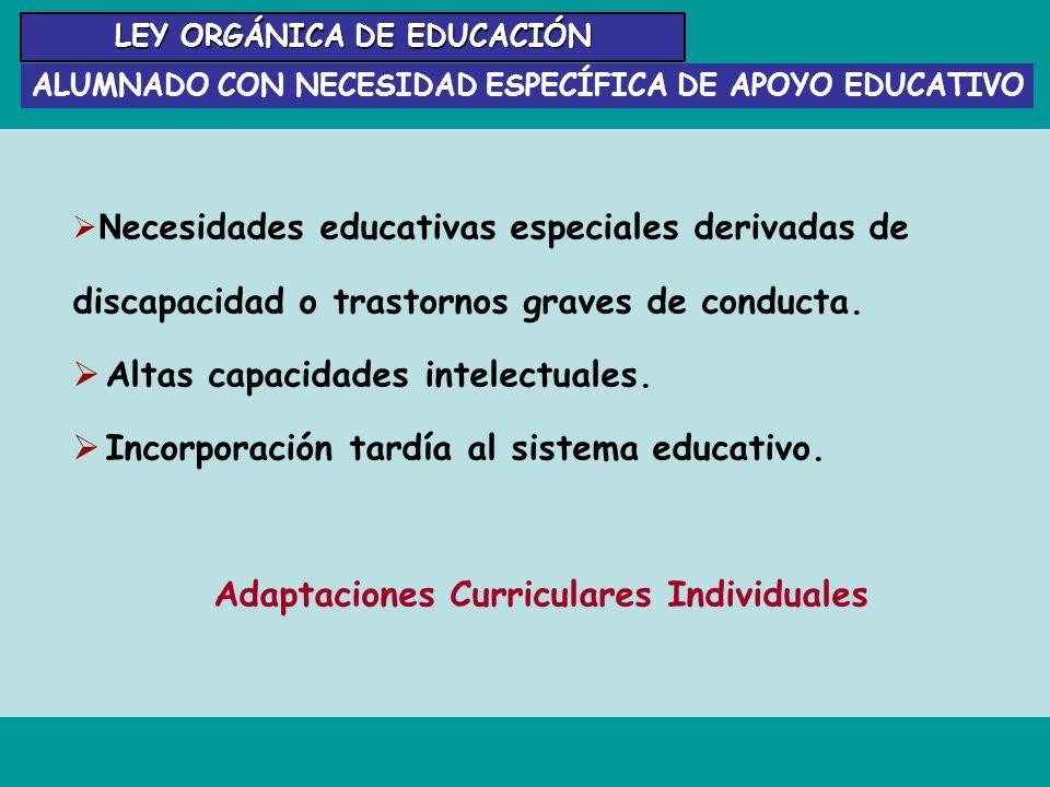 Adaptaciones Curriculares Individuales
