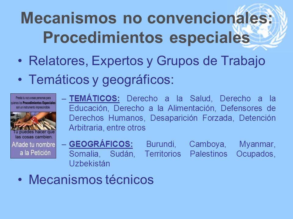 Mecanismos no convencionales: Procedimientos especiales